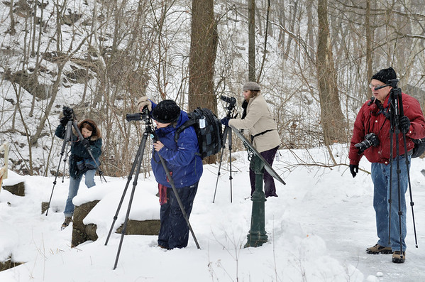 CVPS Winter Photo Walk at Viaduct Park