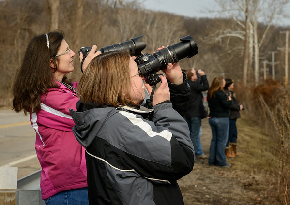 Photographers at the Heron Rookery