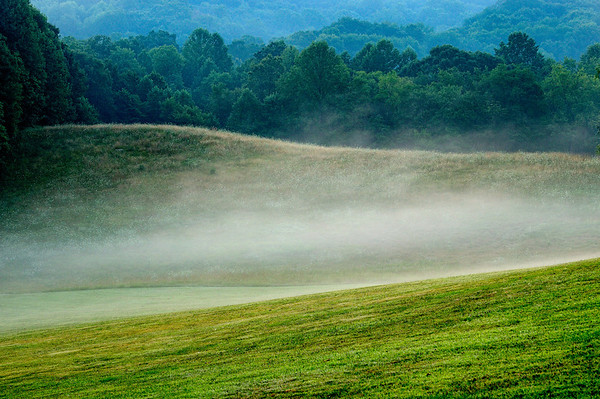 Morning Mist at Kendall Hills - Cuyahoga Valley National Park