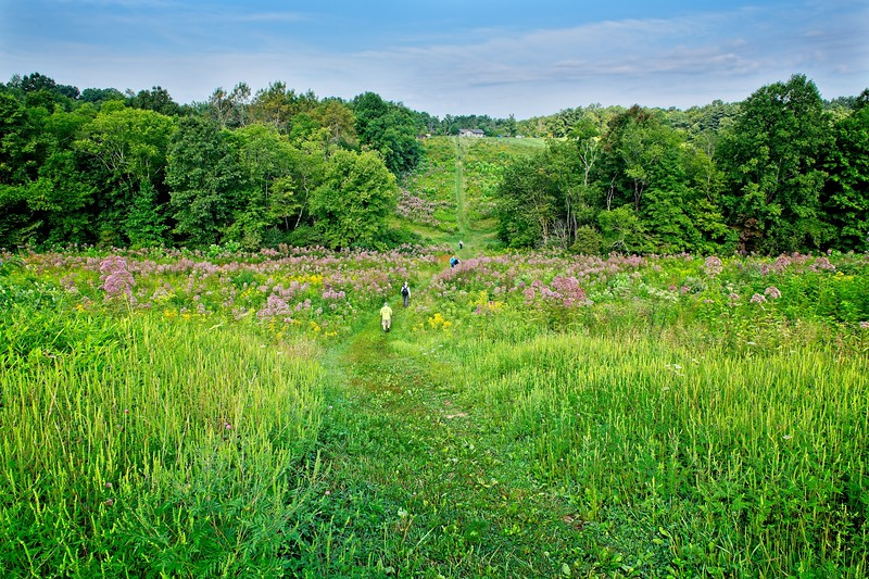 Kendall Hills Photo Walk