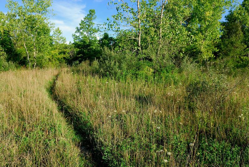 Butterfly Trail - Terra Vista - Cuyahoga Valley National Park