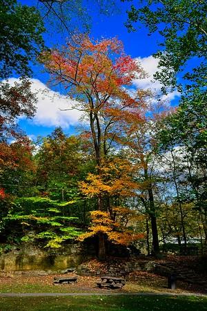 David Fortier Park