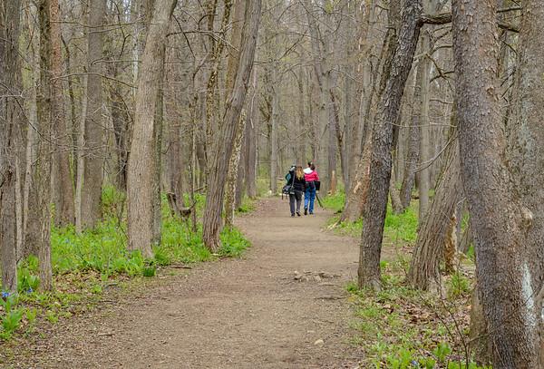 Photographers on the Hemlock Trail