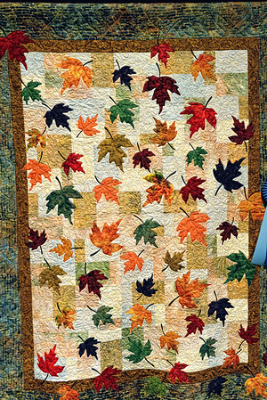 Quilt at the Reflections of Nature Quilt Show - Rocky River Nature Center