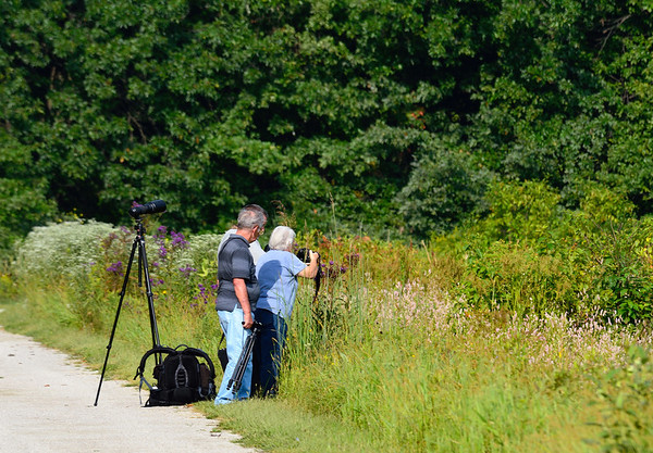 Fred, Mike and Sharon shooting a preying mantis