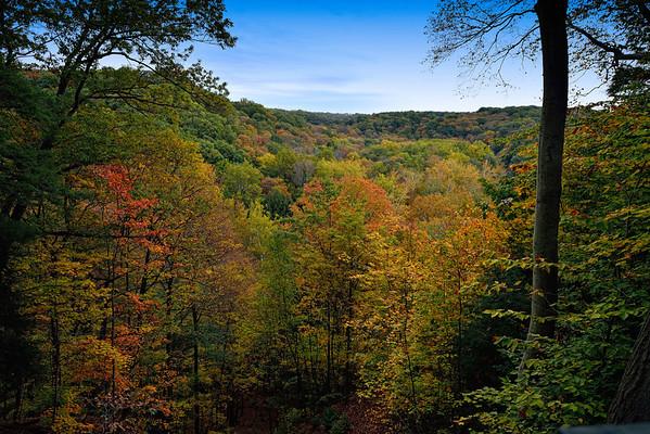 Tinker's Creek Gorge Overlook
