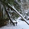 Stebbin's Gulch in the Winter