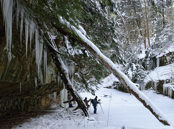 Stebbin's Gulch in the Winter