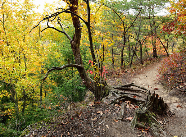 The rim trail at Conkle's Hollow - Hocking Hills