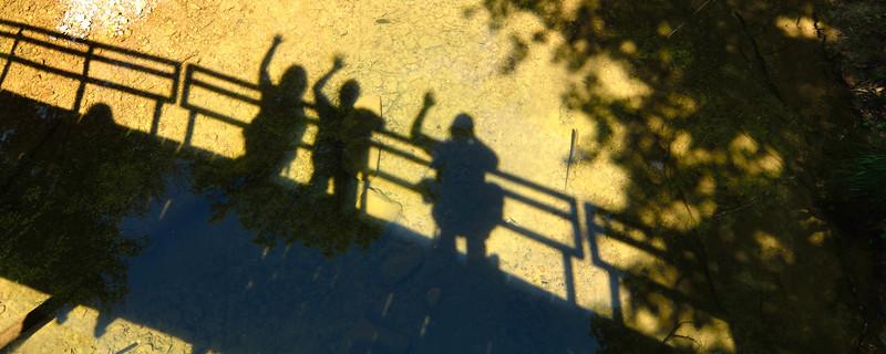 Shadows at Cedar Falls - Hocking Hills