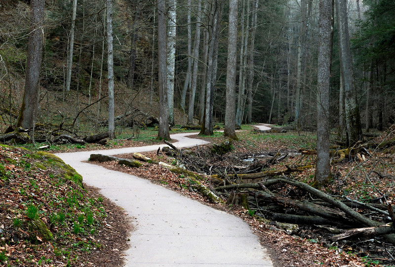 Hocking Hills Spring 07 - Path to Ash Cave