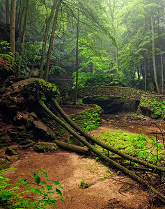 Old Man's Cave Gorge - Hocking Hills State Park