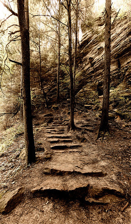 Trail to Old Man's Cave from Cedar Falls