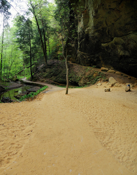 Ash Cave path