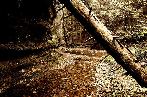 Cedar Falls area of Hocking Hills
