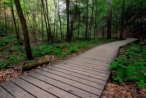 Conkle's Hollow Boardwalk