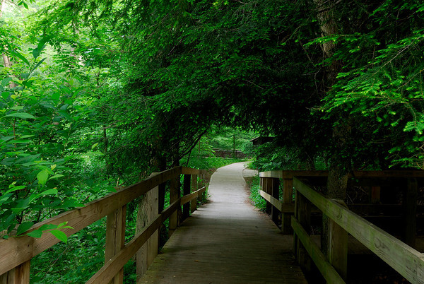 Entrance to Conkle's Hollow Nature Preserve - Hocking Hills