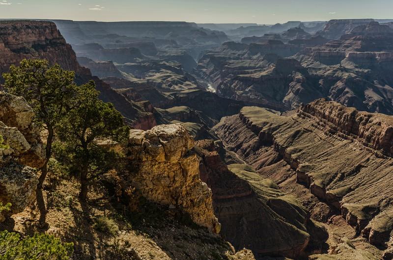 Grand Canyon, AZ, USA