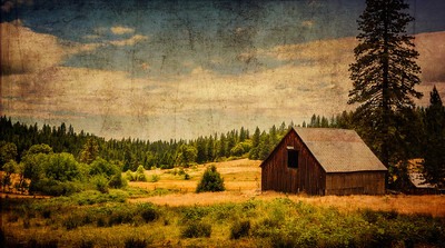 The Days My Grandmother Remembers I grew up on a ranch. And I spent our hot, hot summers on my grandmother's ranch, where I learned to handle a handgun, a rifle... drive a tractor, a car, a horse and buggy - and all sorts of incredibly useful things that one day yet may be useful again.  All I have to see is a scene like this one and it takes me back to the those marvelous, innocent days where the smell of damp dirt (from the sprinklers she'd set every night to settle the dust on the driveway)... the grass hay in the barn, the dry grasses outside, live oak trees and dusty horses were like an olfactory ambrosia.  I don't really expect you to truly understand this... but it's OK.  I just wanted to share what I felt when saw this little scene in the foothills of the Sierras one day.
