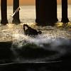 Surfer at Manhattan Beach Pier