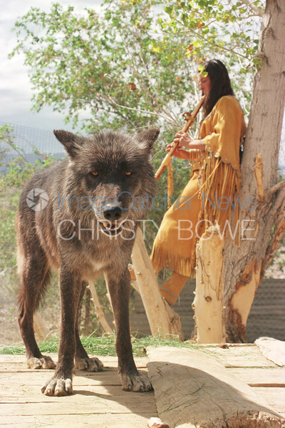 9/9/99<br /> Wolf Mountain Sanctuary<br /> Lucerne Valley, California<br /> <br /> Tonya Littlewolf Carloni considered to be the alpha of her 13 wolves.<br /> Dakota, a British Columbian Black Wolf guards Tonya as she plays her flute <br /> photo by Christy Bowe / ImageCatcher News/ PHOTOlink
