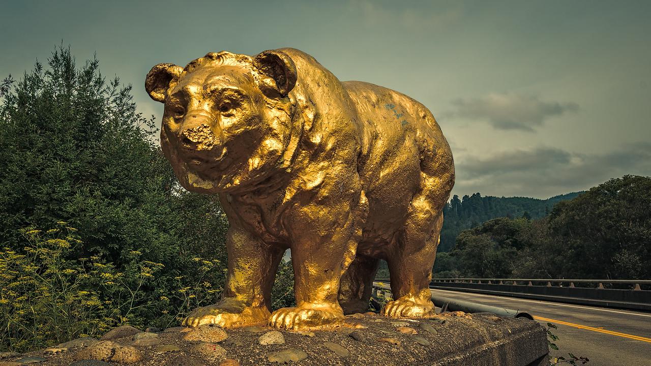 Klamath River Bears