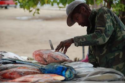 Fish market, Nassau, Bahamas. February 2010.