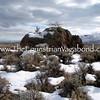 DL-3040 Snow Scenic