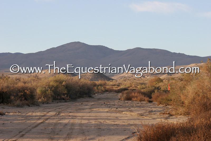 DL-3012 Scenic Desert
