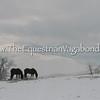 Owyhee Snow II DH-5086B