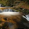 Sweet Creek Gold
