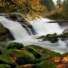 Lake Creek Fish Ladder Falls