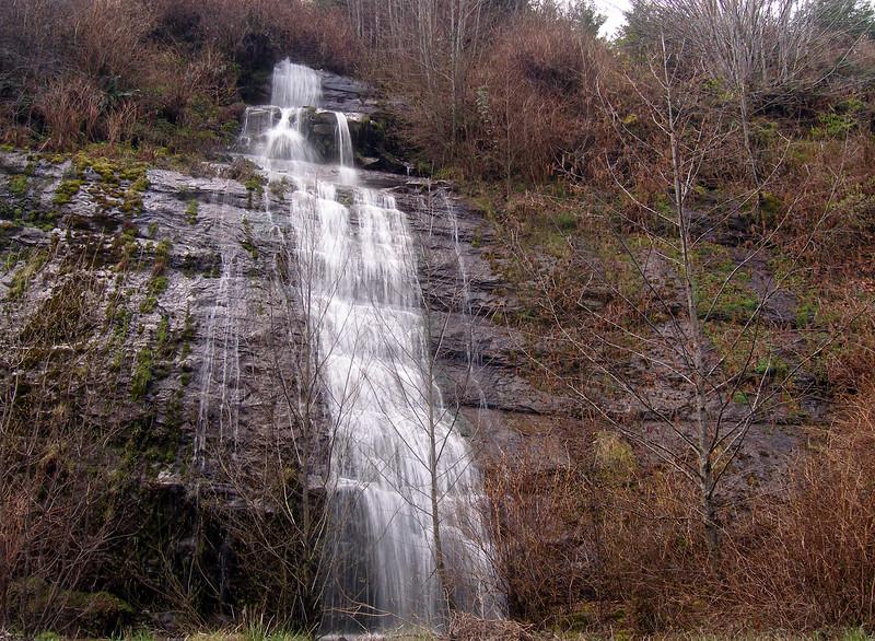 Millicoma Falls