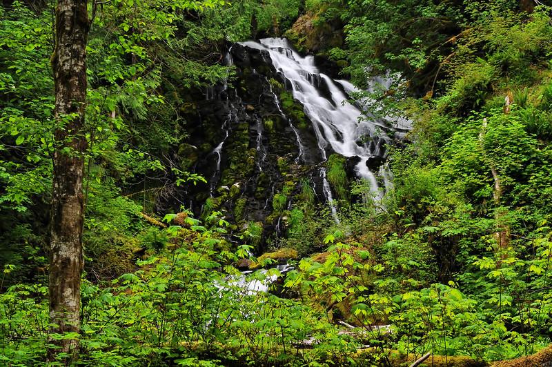 Fishhawk Falls