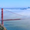 Bay Area 5D MKIII-20170727-0037