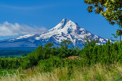 Oregon_Volcano_Alley-20170720-0004