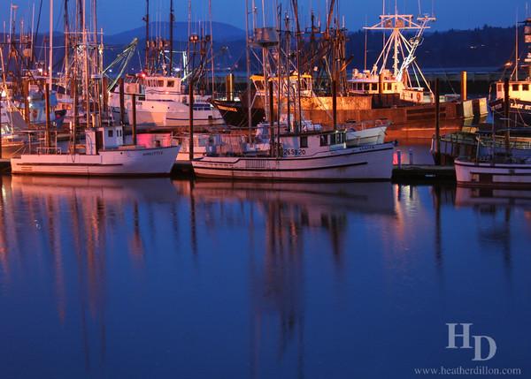 Boat harbor at night, Newport Oregon