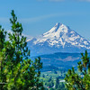 Oregon_Volcano_Alley-20170720-0007