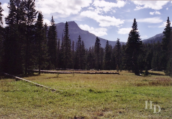 Six mile meadow. Felt like 10 mile meadow.