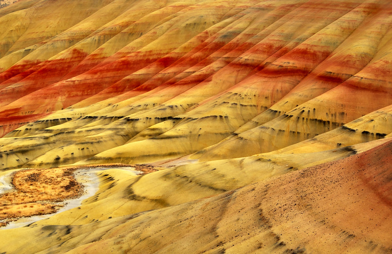 Painted hills @ John Day Fossil Beds National Monument