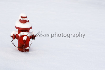 A lone fire hydrant covered in fresh snow.