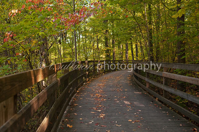 A boardwalk along the Saunders-Monticello Trail near Charlottesville.