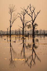 Barat Jayatataka lake, Angkor Wat Archaeological Park, Cambodia