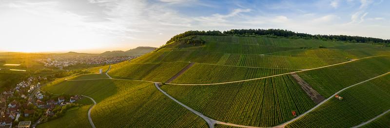 Hoernleskopf wine area, Rems-Murr, Germany