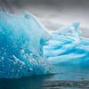 Tracy Arm Fjord Icebergs