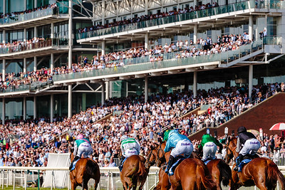 Horse Racing at York Racecourse