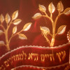 Embroidered Ark cover, Pride of Israel, Toronto, January 2012 © Michel Botman Photography