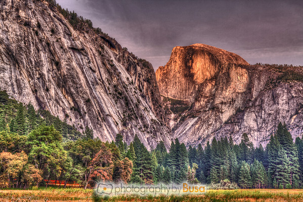 A beautiful Fall sunset on Half Dome in Yosemite National Park, California. Lights from passing cars on Northside Drive can be seen past the trees.