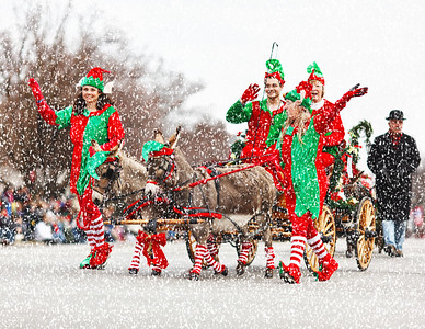 Lebanon Ohio Horse Drawn Carriage Parade Photo