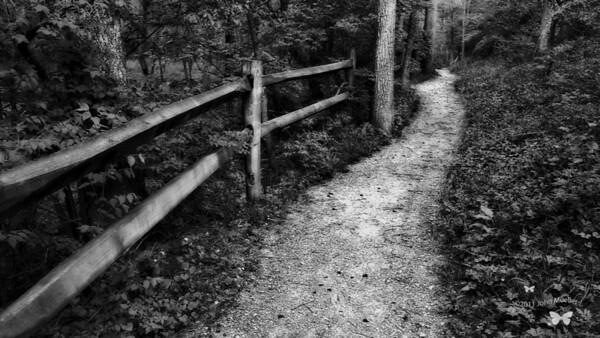 Winton Woods Trail